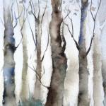 bosco-incantato-2