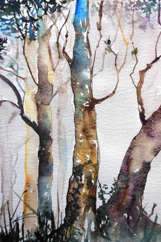 bosco-incantato