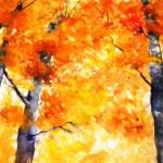 colori-d'autunno