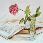 Natura morta con libro e rosa